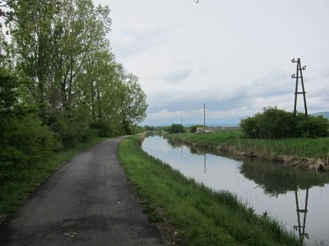In den meisten Abschnitten ist der Weg von - meist alten - Bäumen flankiert.