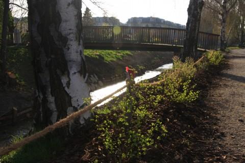 Zwischen dem Weg und der Böschung wurden Hecken gepflanzt